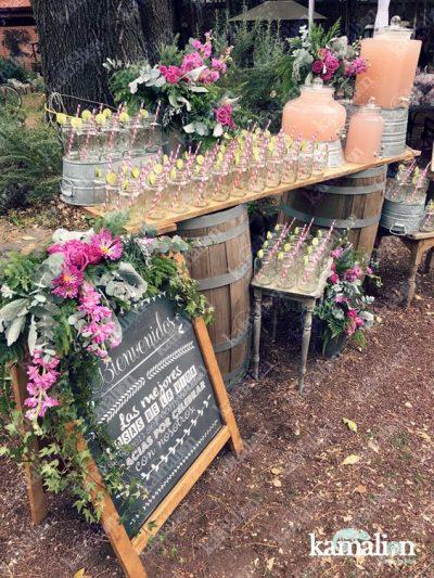limoanda-bcn-casament
