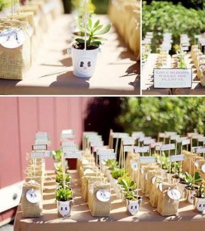 cactus-regal-invitado-collage